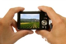 a small digital camera can take excellent digital photos